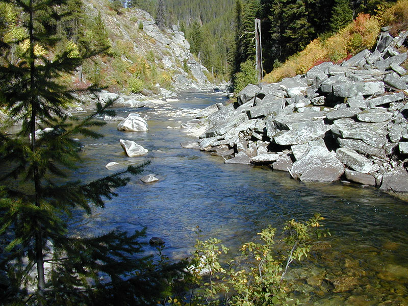 Kelly creek idaho fly fishing heaven for Idaho fly fishing