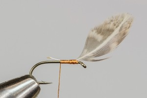 Tie in the hackle