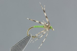 Partridge and Green Soft Hackle